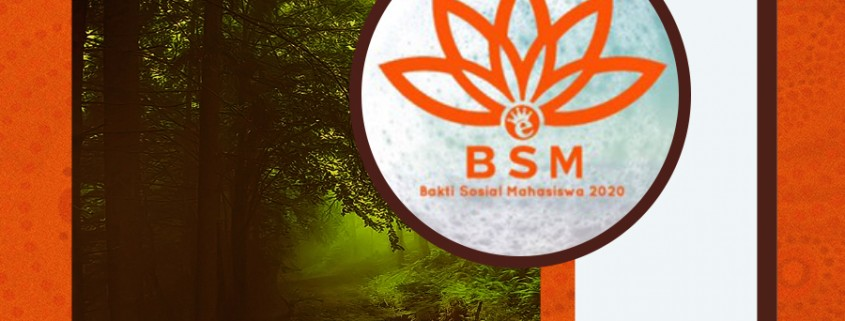 COVER bsm